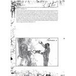 Destreza page 106